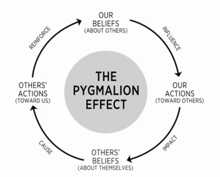 Het Pygmalion effect van Robert Rosenthal en Lenore Jacobson